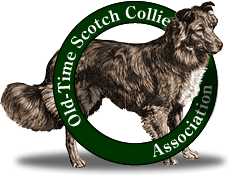 Old-Time Scotch Collie Association