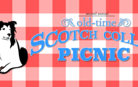 Old Time Scotch Collie Picnic 2017